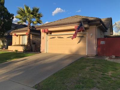 Elk Grove Single Family Home For Sale: 9521 Soaring Oak Drive