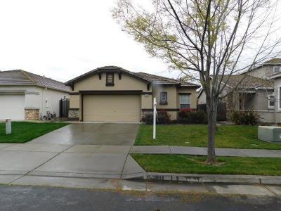 West Sacramento Single Family Home For Sale: 3265 Kellys Island Road