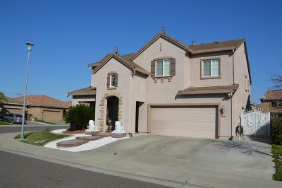 Elk Grove Single Family Home For Sale: 8676 Hawley Way