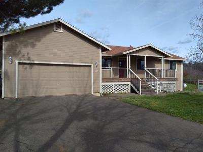 El Dorado County Single Family Home For Sale: 1515 Paymaster Ct
