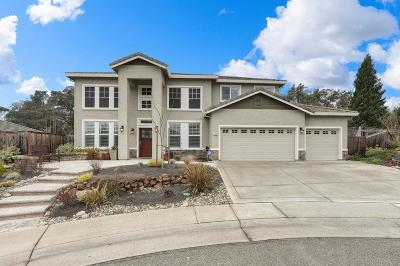 Folsom Single Family Home For Sale: 1465 Marietta Court