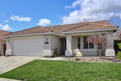 Elk Grove Single Family Home For Sale: 9816 Orino Court