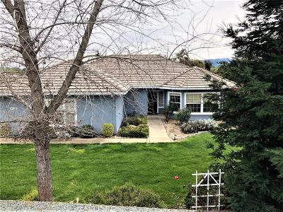 Valley Springs Single Family Home For Sale: 2049 Hartvickson