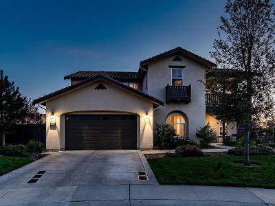El Dorado County Single Family Home For Sale: 500 San Marco Pl