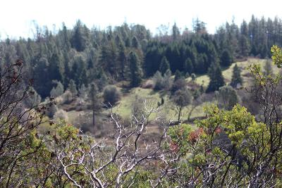 Colfax Residential Lots & Land For Sale: Placer Hills Road