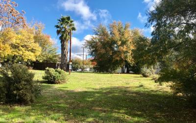 Fair Oaks Commercial Lots & Land For Sale: 10500 Fair Oaks