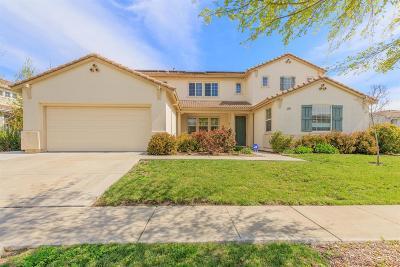 West Sacramento Single Family Home For Sale: 3729 Bridgeway Lakes Drive