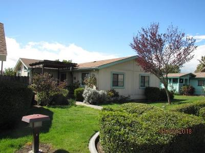 Manteca Single Family Home For Sale: 2142 Tiffany Walk