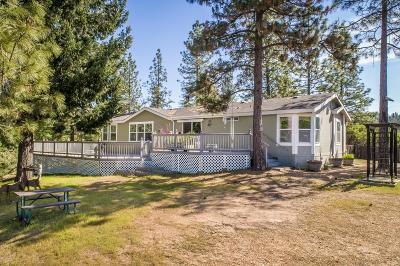 Colfax Single Family Home For Sale: 27197 Norton Grade Road