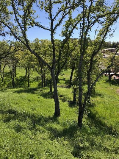 El Dorado Hills Residential Lots & Land For Sale: 7050 Via Barlogio