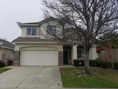 Roseville Single Family Home For Sale: 1719 Cadfael Street