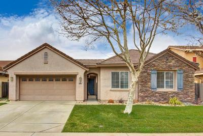 Elk Grove Single Family Home For Sale: 9865 Spring View Way