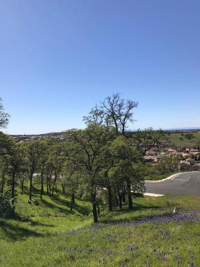 El Dorado Hills Residential Lots & Land For Sale: 7062 Via Barlogio