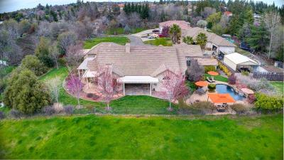 Orangevale Single Family Home For Sale: 9595 Pheasant Creek Place