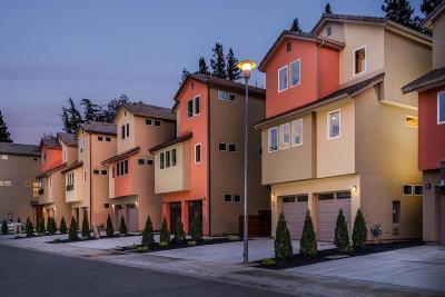 Single Family Home For Sale: 71 Rio Viale Court