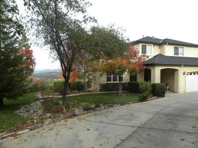 Shingle Springs Single Family Home For Sale: 2911 Dos Vistas Drive