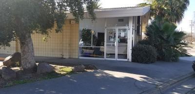 Patterson Commercial For Sale: 101 South El Circulo Avenue