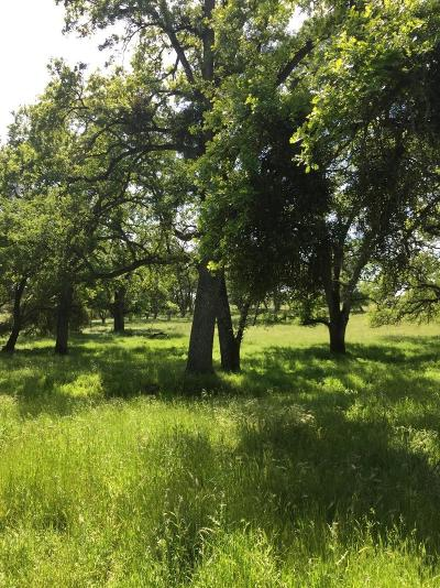 Amador County Residential Lots & Land For Sale: 40 Old Sacramento Road