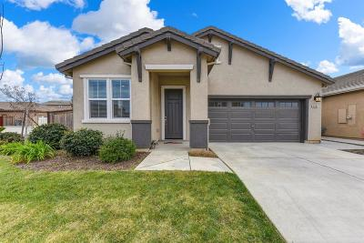 Elk Grove Single Family Home For Sale: 4884 Ice Age Way