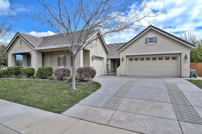 Elk Grove Single Family Home For Sale: 9145 Trainor Way