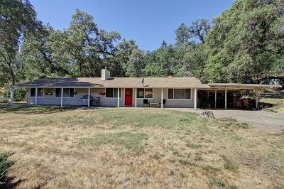 Grass Valley Single Family Home For Sale: 12131 Wolf Road