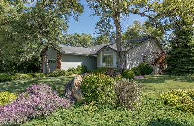 Auburn Single Family Home For Sale: 12672 Princeton Drive
