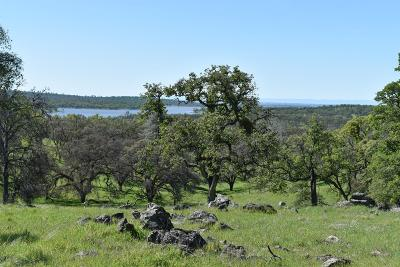 Nevada County Commercial Lots & Land For Sale: 19045 Matthew Road