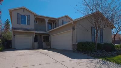 Roseville Single Family Home For Sale: 7050 Claremont Circle
