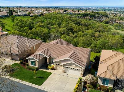 Rocklin Single Family Home For Sale: 4204 Coldwater Drive
