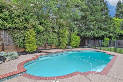 El Dorado Hills Single Family Home For Sale: 4011 Bancroft Drive