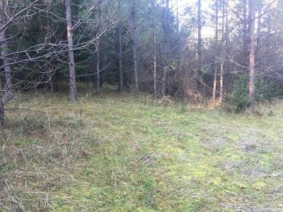 Amador County Residential Lots & Land For Sale: 22851 Red Corral Rd