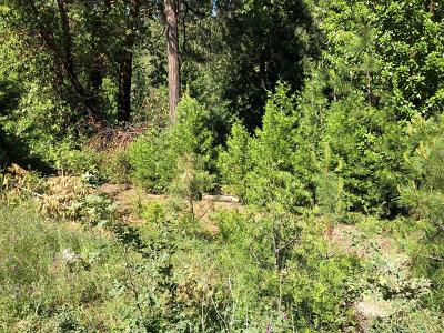 Amador County Residential Lots & Land For Sale: 26875 Nobb Ct