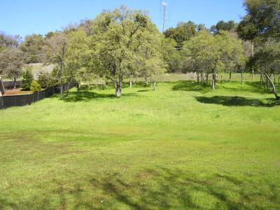 Auburn Residential Lots & Land For Sale: 720 Deerbrooke Trail