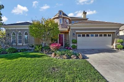 Stockton Single Family Home For Sale: 4401 Spyglass Drive