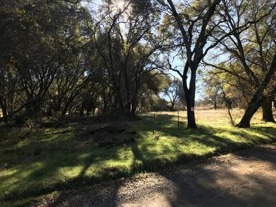 Grass Valley Residential Lots & Land For Sale: 20617 White Oak Drive