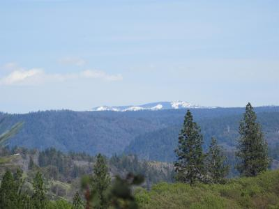 Placer County Residential Lots & Land For Sale: John Muir Drive