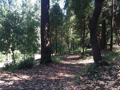 Camino Residential Lots & Land For Sale: 2531 Kittywake Lane