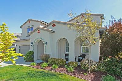 Rocklin Single Family Home For Sale: 935 Browning Lane