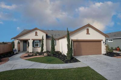 Manteca Single Family Home For Sale: 1215 Mottarone Drive