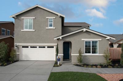 Manteca Single Family Home For Sale: 1207 Mottarone Drive