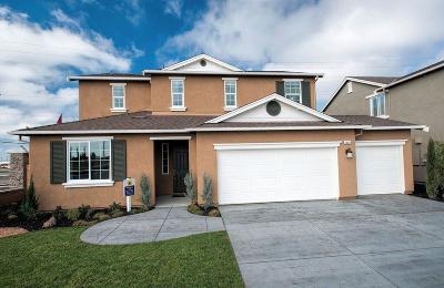 Manteca Single Family Home For Sale: 1201 Mottarone Drive
