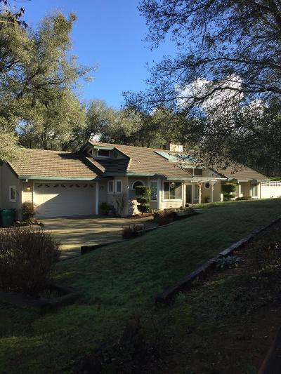 El Dorado Hills Single Family Home For Sale: 1047 Uplands Drive