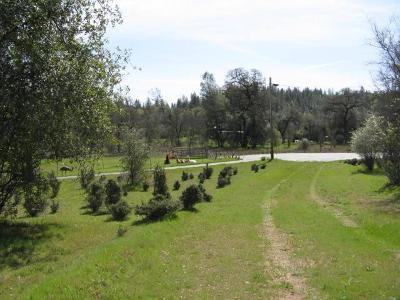 Yuba County Residential Lots & Land For Sale: 13874 Phoenix Avenue