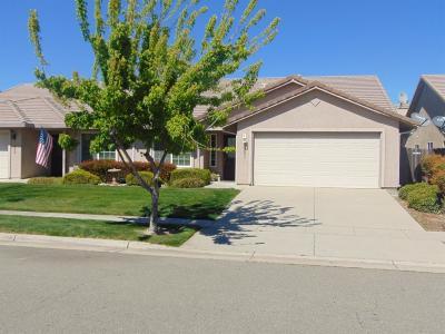 Yuba City Single Family Home For Sale: 1051 Arbor Drive