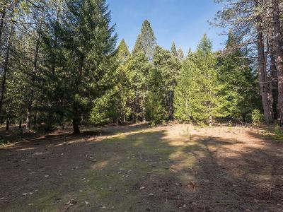 Nevada County Commercial Lots & Land For Sale: 10840 Mill Springs Drive