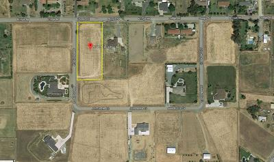 Galt Residential Lots & Land For Sale: 9768 Pringle Road