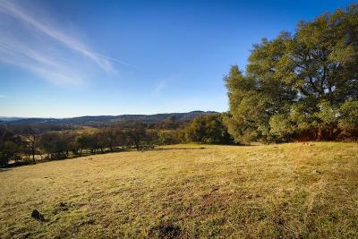 Pilot Hill Residential Lots & Land For Sale: Highway 49