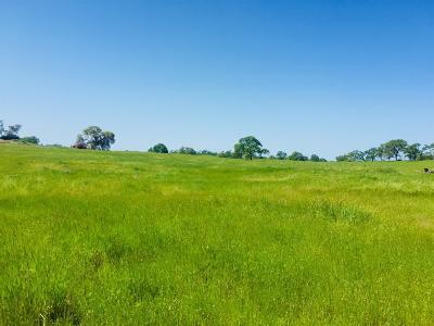 Amador County Residential Lots & Land For Sale: 2501 Village Drive
