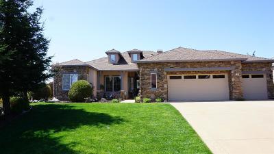 Copperopolis Single Family Home For Sale: 151 Rock Ridge Lane