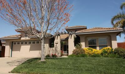 Sacramento Single Family Home For Sale: 241 Highfield Circle